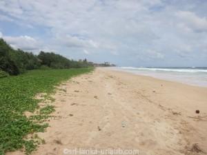 Koggala-Beach-23