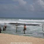 Koggala Beach Kingfisher