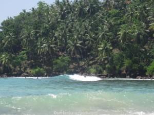 mirissa-beach17
